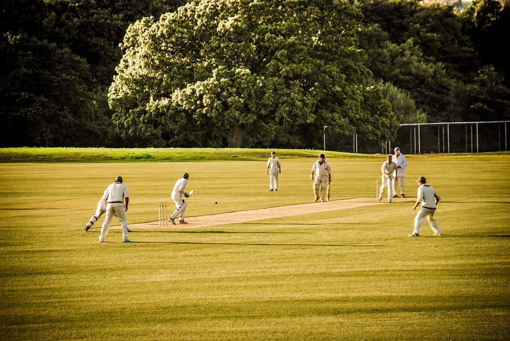 Cricket at Newclose